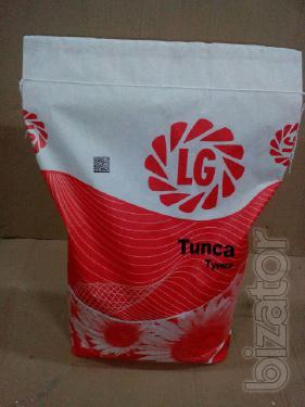Семена подсолнечника Limagrain Tunka - Оригинал