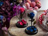 Проснись, скоро праздники! Порадуй свою любимую с помощью розы в колбе, которая будет у тебя уже через 1 день.