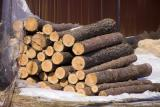 Sell firewood in Odesa and Mykolaiv oblast wholesale.