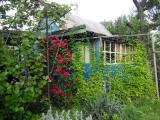 Дачный участок, черта города, Коммунаровский район.