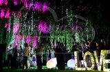 Ночная регистрация брака в Алматы
