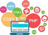 nts infotech web development | nts infotech hyderabad | nts infotech login