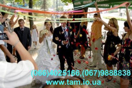 Тамада и музыка на свадьбу в Киеве! Живая музыка, дискотека, видео, фото,лимузин