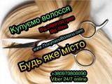 Продати волосся в Луцьку Купимо волосся Луцьк та Волинська область