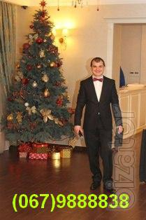 Дід Мороз, тамада, жива музика, ді джей, вокаліст, акордеоніст у Києві. Новий рік, ювілей, весілля