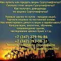 Покупка – продажа акций Сургутнефтегаз. Цена акций Сургутнефтегаз сегодня.