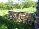 Пчелопакеты на 4-рамки 2019 год с доставкой Карпатка