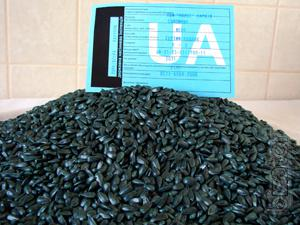 Базис гербицид кукурузы