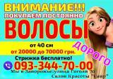 Продать волосы в Запорожье Покупаем волосы дорого