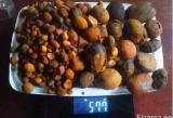 Ox Gallstones & Cattle Gallstones