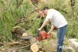 Спил дерева, покос травы , расчистка участков вывоз мусора Одесса