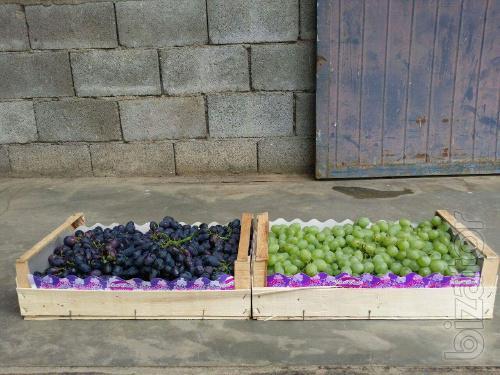 Ящики и лотки, упаковка для фруктов и овощей