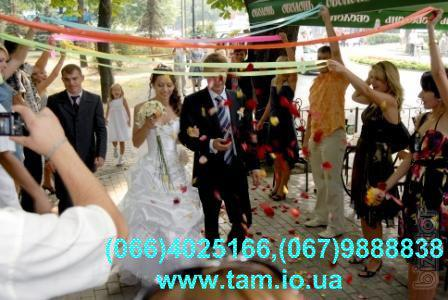 Тамада на весілля у Києві! Жива музика, відео, фото, лімузин, баяніст