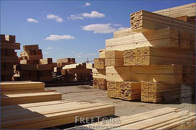 Sell high quality timber: