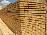 Board pine samples, n/a, timber Sosnovy