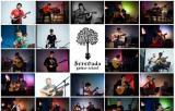 Школа гитары Serenada. Уроки гитары, курсы гитары, уроки игры на гитаре