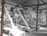 оборудование для шелушения и сепарации семечки тыквы