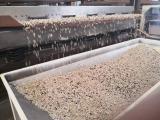 оборудование для шелушения и сепарации семечки подсолнечника