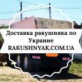 Продажа с доставкой камня ракушняка по Украине.
