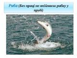 Требуется расширенный ассортимент рыбоморепродукции.