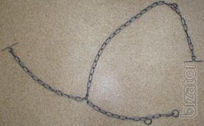 Chain trehkoltsevaya for tying cattle (Poltava)