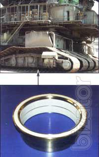 The track roller bearing