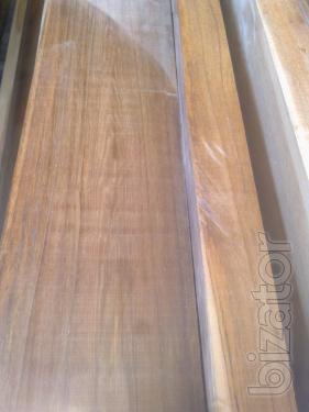 Board Tick (lat.Tectona grandis) calibrated 50 mm
