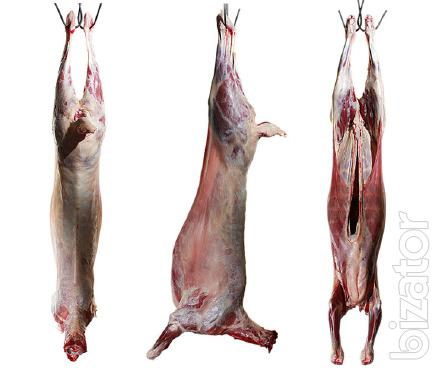 Sell mutton (lamb) retail and wholesale