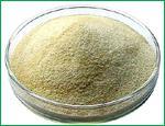 Sodium Alginate technical