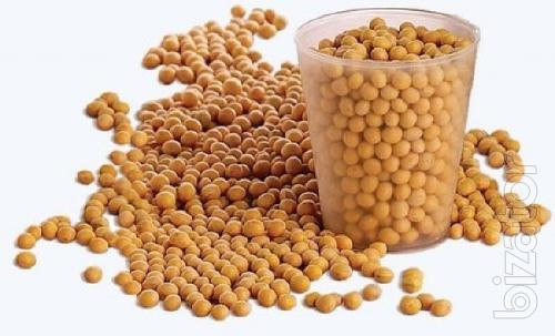 Buy soy