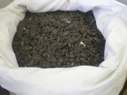 Sell confectionery sunflower seeds