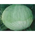 Buy cabbage (sell)