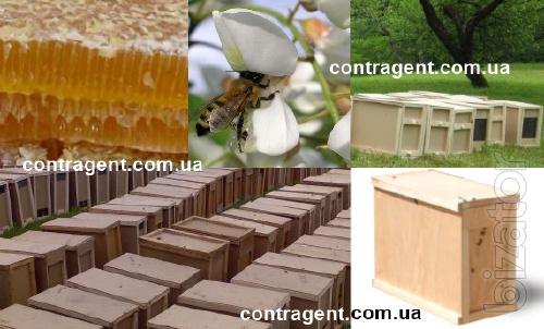 Настой моли, Sell bee products and bee packages from our own apiaries