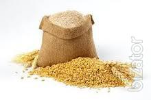Buy soy, corn , wheat, rye