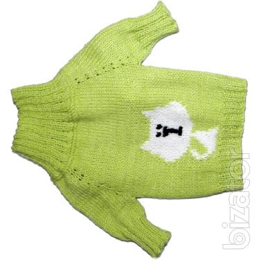 clothing for dogs in Internet shop