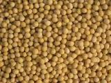 soybeans, barley, buckwheat