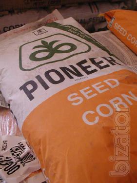 Sales of corn seed pioneer