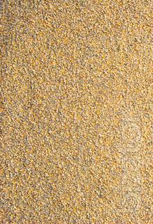 Feed for broilers PK-1 TM Standard