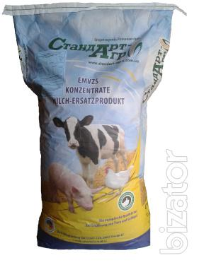 Feed for broiler PK-4 from 31 to 45 days
