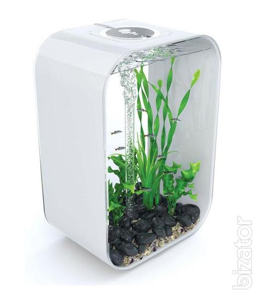 aquariums small elite with the original design buy on. Black Bedroom Furniture Sets. Home Design Ideas