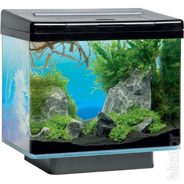 Nano aquariums small aquariums from 2 to 60 litres buy for Aquarium 10 litres