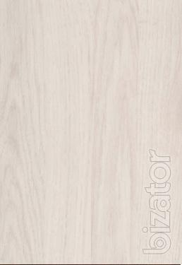 Amber oak (UYF 01-R9)