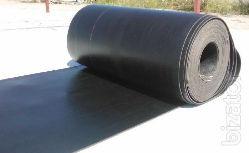 Belt conveyor (conveyor)