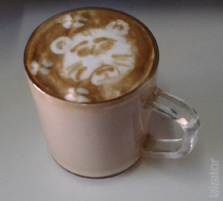 Coffee machine DeLonghi ESAM2600 warranty - Buy on www.bizator.com