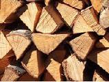 Firewood oak stab