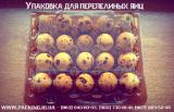 Reusable, high-quality and best packing under quail egg in Ukraine!