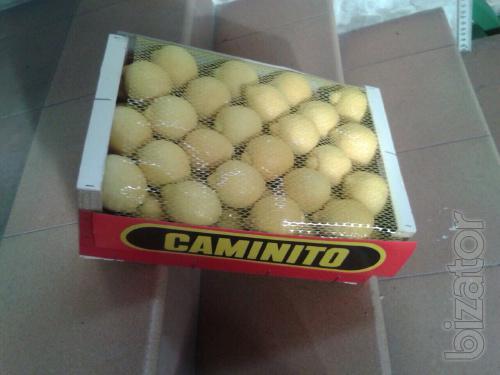 sell lemon from Spain
