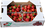 Corrugated tray clunny (berry)