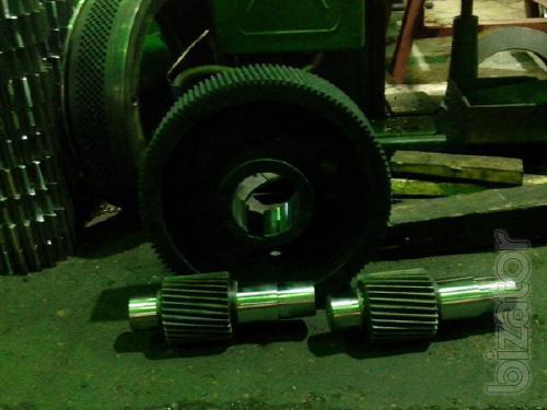 Spare parts for gearboxes presses granulators OGM 1.5