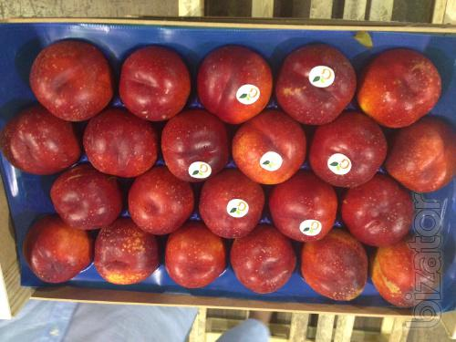 Sell peaches from Spain